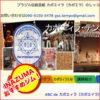 飯田橋・水道橋・市ヶ谷格闘技ジム-カポエィラ・テンポ東新宿支部