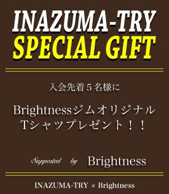 GIFT-Brightness