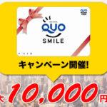 年内最大!格闘技ジム入会キャンペーン開催のお知らせ。